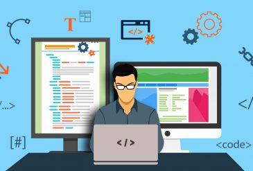 Web Development. Who are web developers